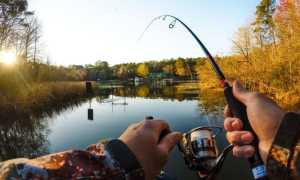 Стоит ли ехать на рыбалку