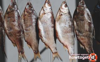 Сушить рыбу в домашних условиях