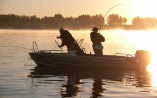 Платная рыбалка на волге