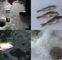 Рыбацкие хитрости