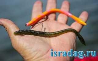 Силиконовые черви для рыбалки