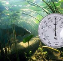 Нормальное атмосферное давление для рыбалки
