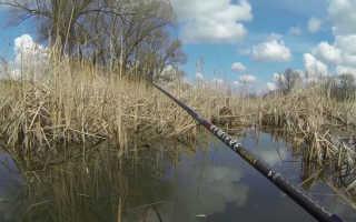 Рыбалка на боковой кивок летом видео