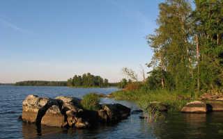 Река вуокса рыбалка