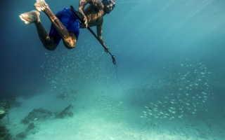 Особенности подводной рыбалки