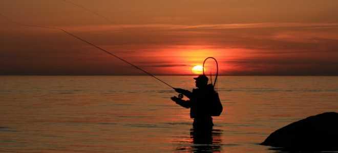 Рыбные места в карелии