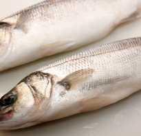 Рыба себаста