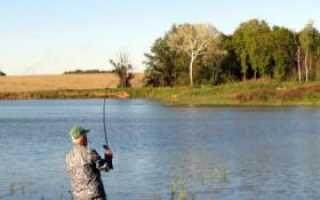 Рыбалка на оке в кашире