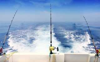 Рыбалка на троллинг