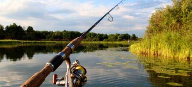 Хороший спиннинг для рыбалки
