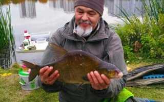 Рыбалка на пенопластовые шарики видео