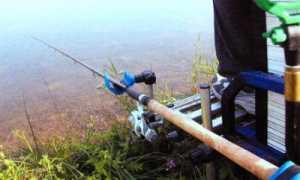Матчевая ловля