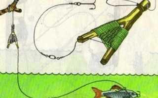 Снасть для ловли на живца с берега