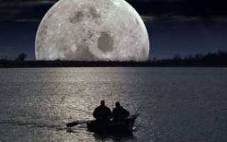 Фазы луны и клев рыбы