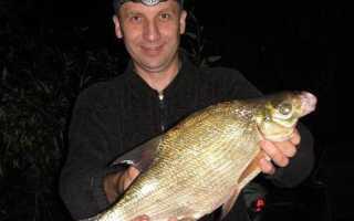 Рыбалка ночью