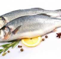 Рыба себаста фото
