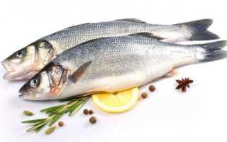 Сибас рыба википедия